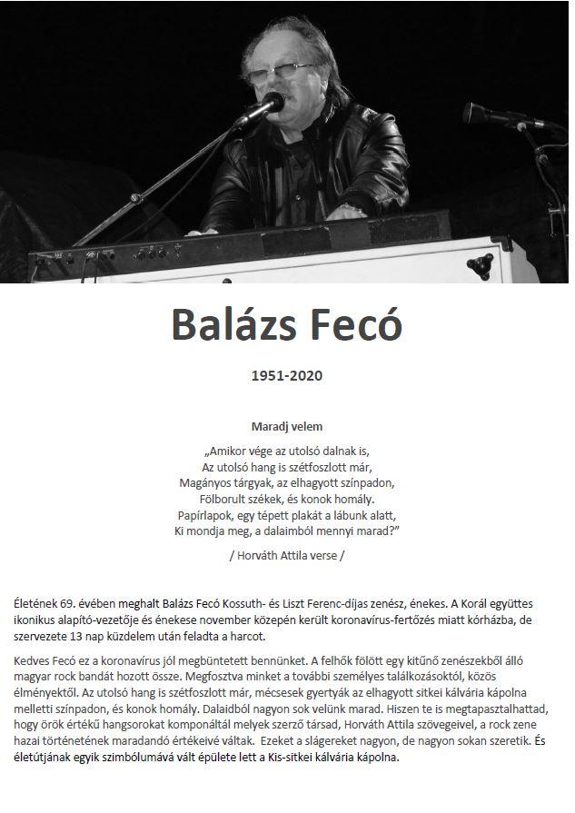 BalazsFeco201127_1
